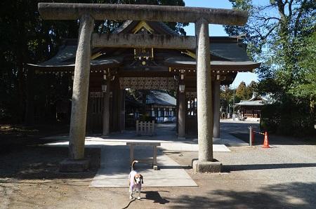 0180304姉崎神社34