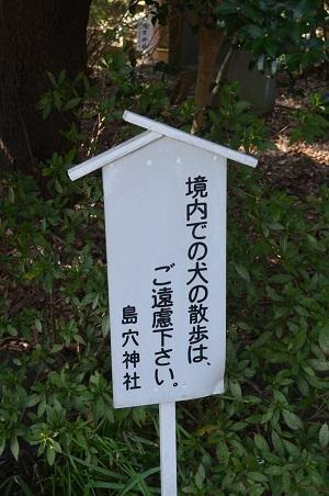 20180304島穴神社11