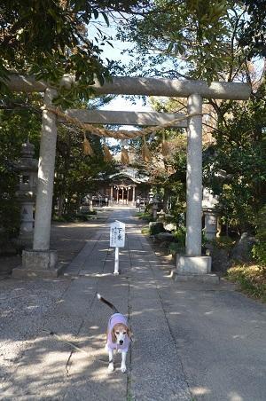 20180304島穴神社10