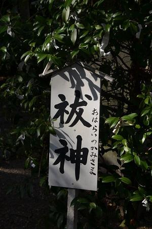 20180304島穴神社26