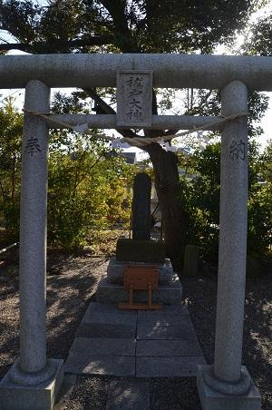20180304大宮神社32