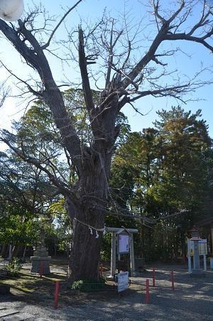 20180304大宮神社41
