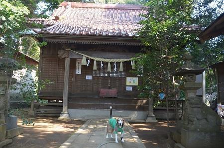 20180314高津比咩神社07