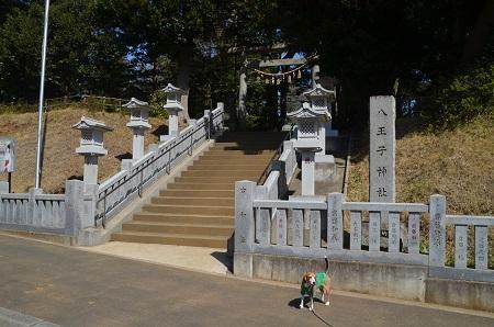 20180314八王子神社0102
