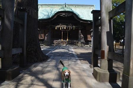 20180314二宮神社13