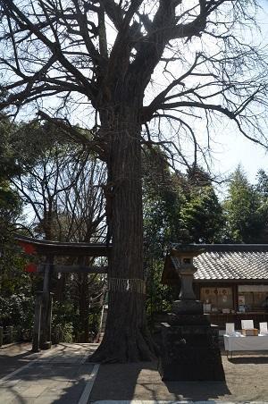 20180314二宮神社29