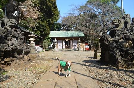 20180314御嶽神社11