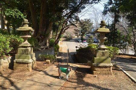 20180314御嶽神社10