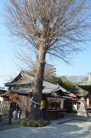 20180314菊田神社42