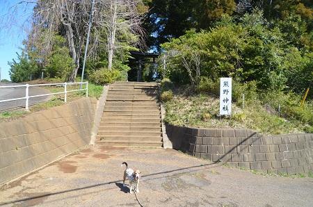 20180317熊野神社01