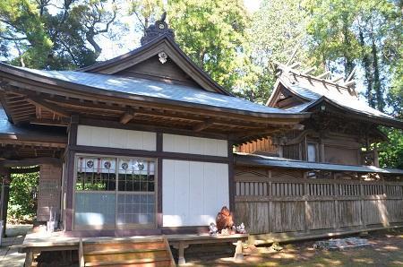 20180317熊野神社20
