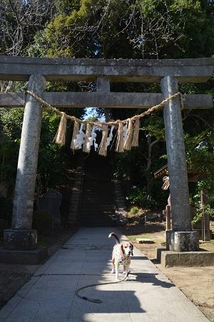 20180317竹内神社05