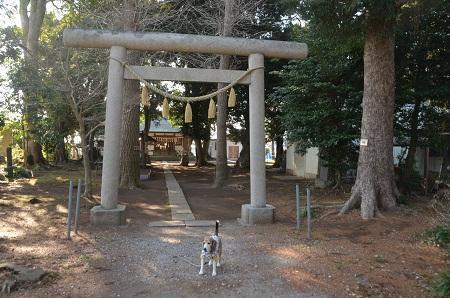 20180317中里諏訪神社03