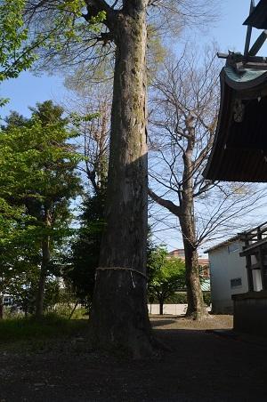 0180328市場八幡神社24