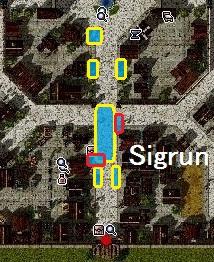 プロマップ ベース2 Sigrun