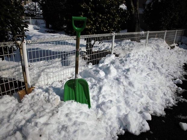1 18.1.23 雪かき (26)