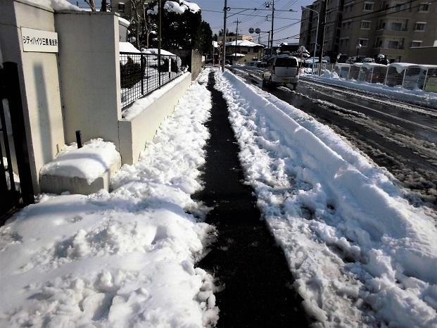 3 18.1.23 雪かき (35)