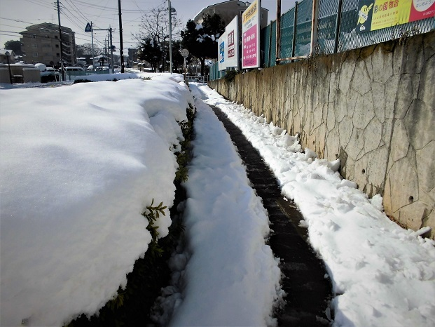 4 18.1.23 雪かき (30)