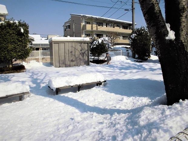 5 18.1.23 雪かき (21)