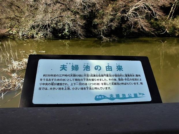 4 18.1.27 西鎌倉~藤沢ハイク (8)