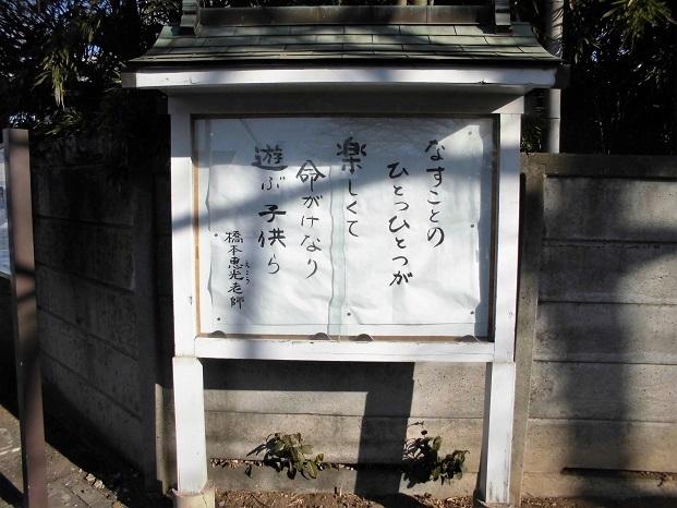 3 18.1.31 散歩 カモ (5)