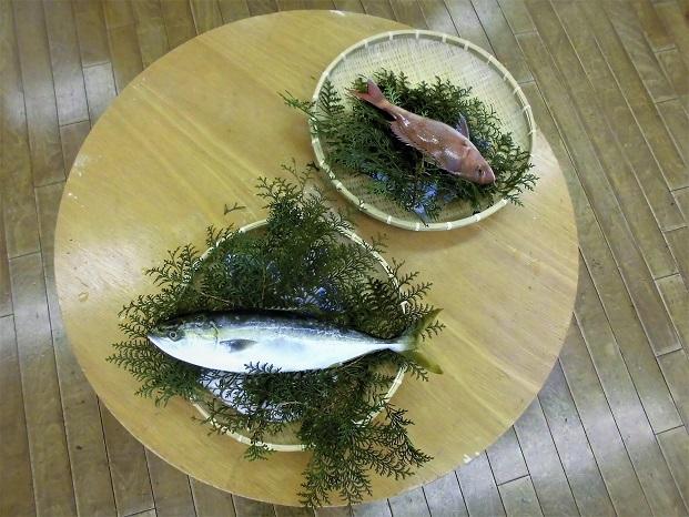 18.2.19  モチーフ魚 (4)