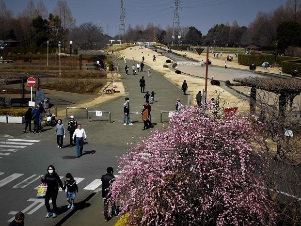 18.3.4 子供たちと花の丘公園  (25)