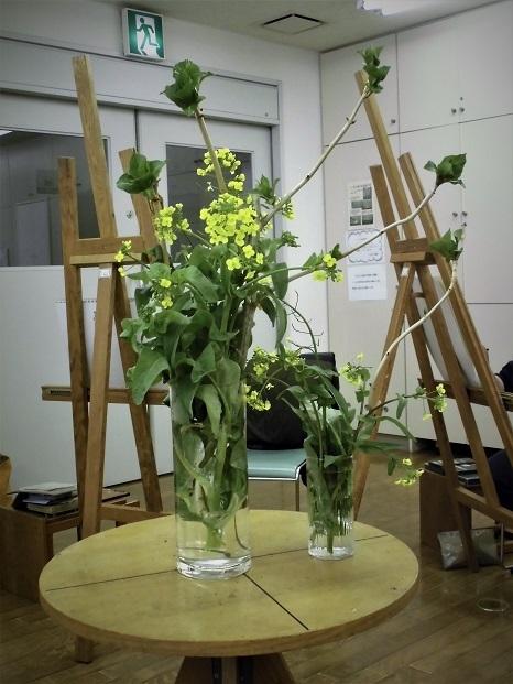 18.3.19 モチーフ・菜の花 (4)