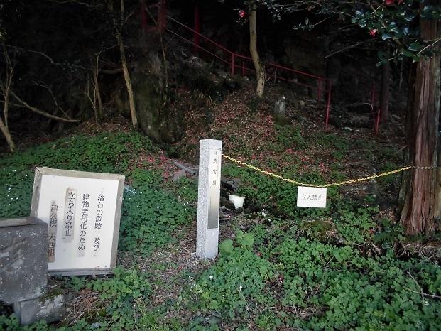 5 18.3.23 大鷹取山  (155)