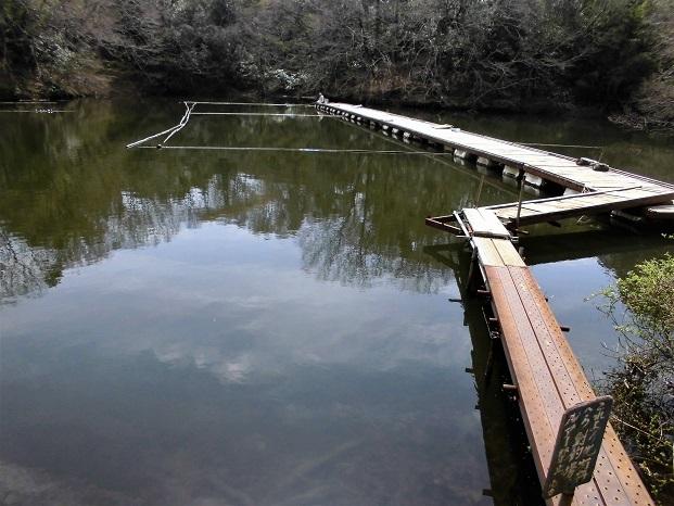 18.3.26 震生湖 (21)