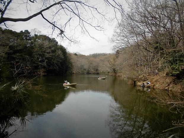 18.3.26 震生湖 (61)