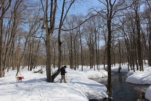 040雪の散策路
