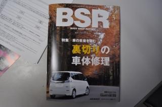DSC_0120 (800x531)