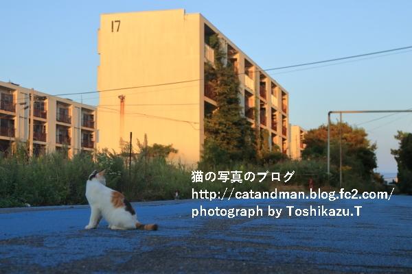 IMG_7974s.jpg