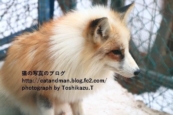 IMG_9836s.jpg