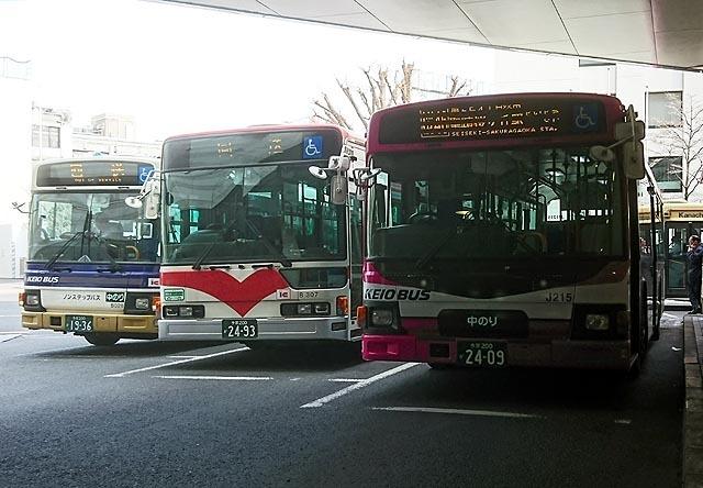 DSC_1517.jpg