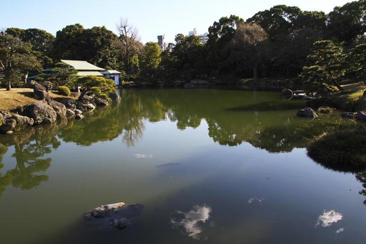 清澄庭園-049