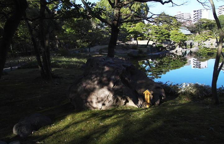 式根島-064