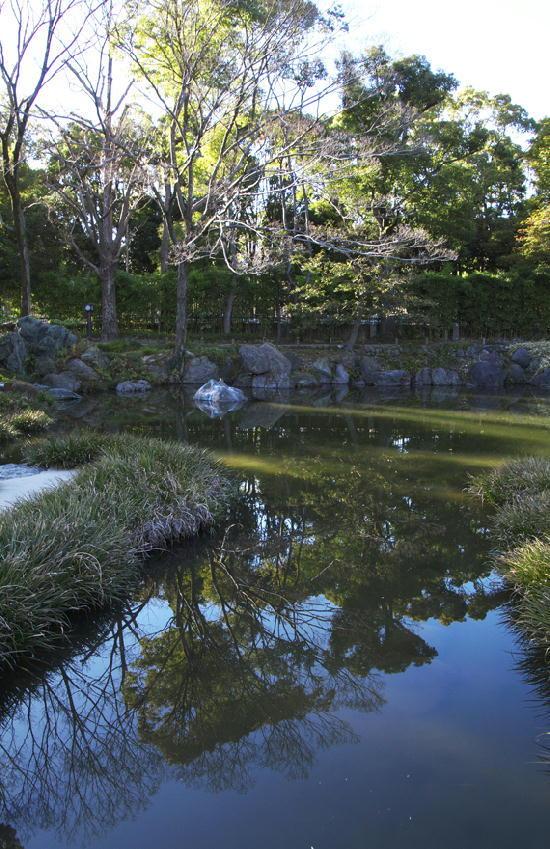 清澄庭園-054