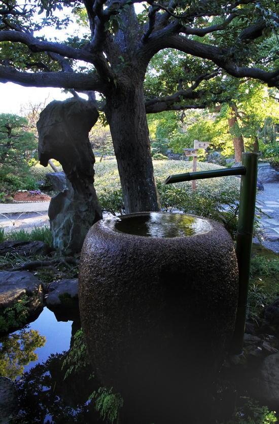 清澄庭園-117