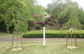 天皇陛下御在位三十年記念植樹