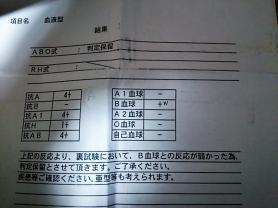 血液型検査結果2