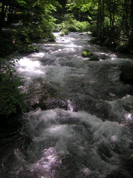 1804010.jpg