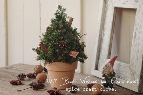 ヒムロスギのプリザーブで作ったナチュラルなクリスマスツリー