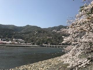 春の京都2018・嵐山