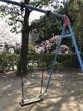 春の京都2018・児童公園