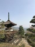 春の京都2018・常寂光寺