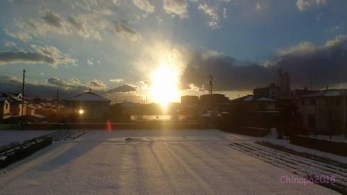 東京郊外の雪