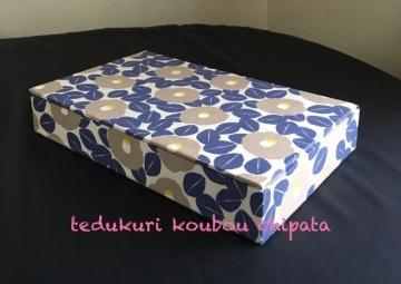 karu-kou495