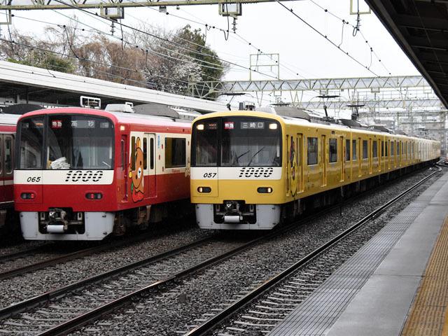 1065_1057_kumatori_180322.jpg